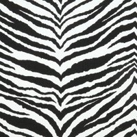 Zebre Black